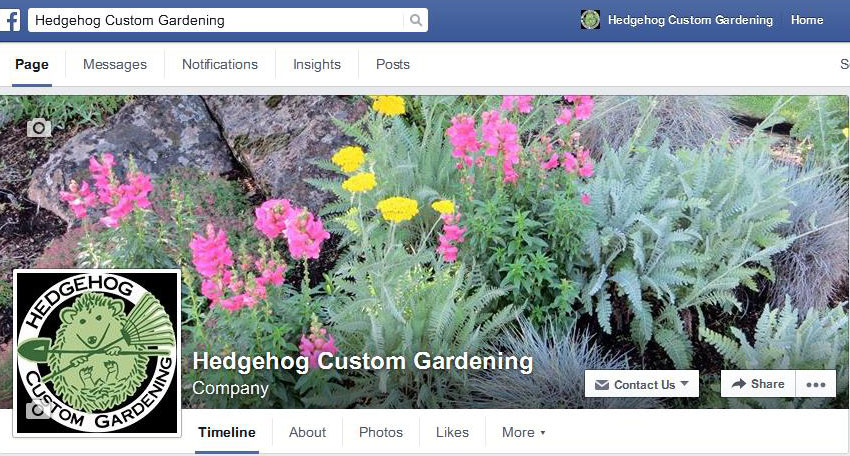 Hedgehog Custom Gardening